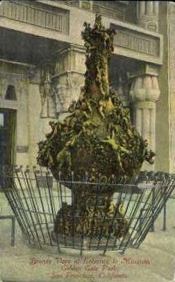 Bronze Vase, Golden Gate Park - San Francisco, California CA Postcard