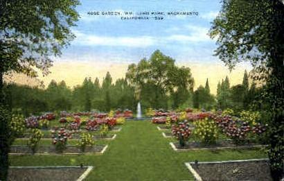 Rose Garden, Land Park - Sacramento, California CA Postcard