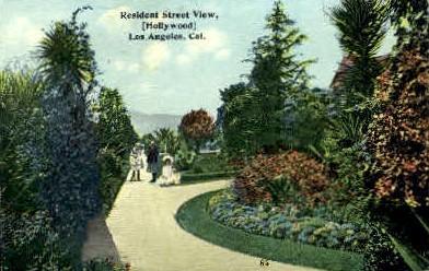 Resident Street View - Los Angeles, California CA Postcard
