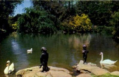 The Frog & Duck Babies - Glendale, California CA Postcard