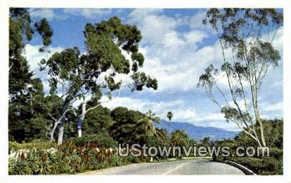 Chanel Drive - Santa Barbara, California CA Postcard