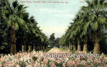 Palm Drive, Eastlake Park - Los Angeles, California CA Postcard