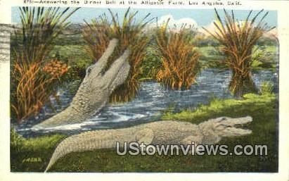 Alligator Farm - Los Angeles, California CA Postcard