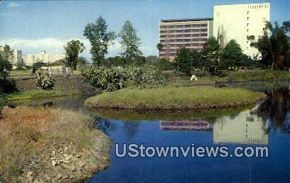 La Brea Tar Pits - Los Angeles, California CA Postcard
