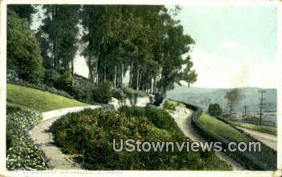 Elysian Park - Los Angeles, California CA Postcard