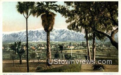Palms - Pasadena, California CA Postcard