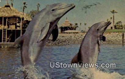 Brisk Walk, Sea World Lagoon - Pomona, California CA Postcard