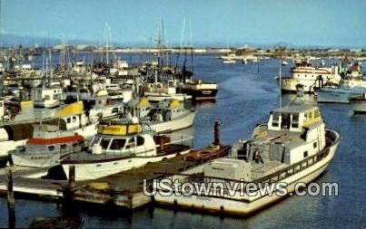 Sportfishing Boats - San Diego, California CA Postcard