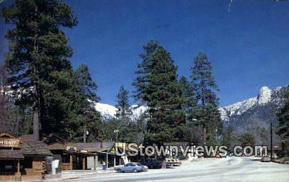 Idyllwild - California CA Postcard