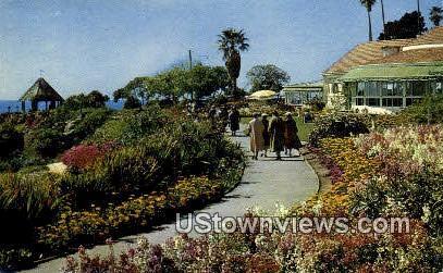 Floral Gardens, Heisler Park - Laguna Beach, California CA Postcard