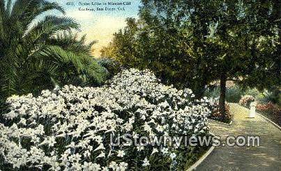 Mission Cliff Gardens - San Diego, California CA Postcard