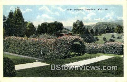 Rose Pergola - Pasadena, California CA Postcard