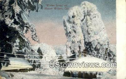 Mt. Wilson - California CA Postcard