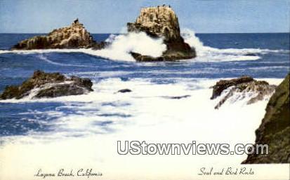 Seal & Bird Rock - Laguna Beach, California CA Postcard