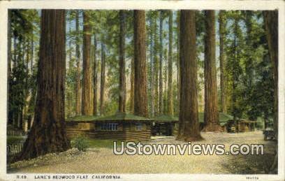 Lane's - Redwood Flat, California CA Postcard