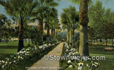 The Park - Long Beach, California CA Postcard