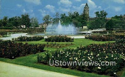 University of Southern California - Los Angeles Postcard