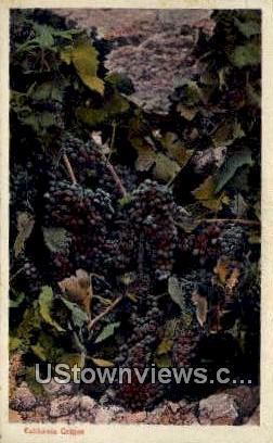 Grapes - Los Angeles, California CA Postcard