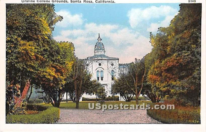 Ursline College Grounds - Santa Rosa, California CA Postcard
