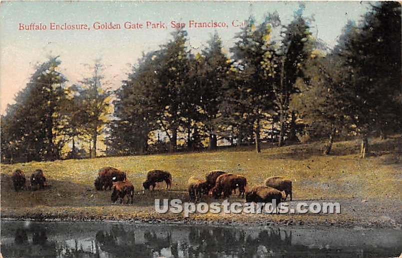 Buffalo Enclosure, Golden Gate Park - San Francisco, California CA Postcard