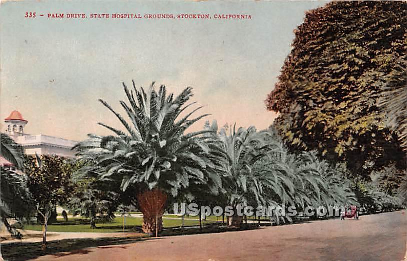 Palm Drive, State Hospital Grounds - Stockton, California CA Postcard