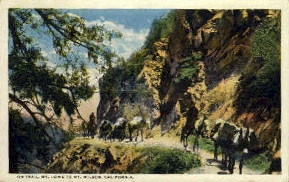 On Trail - Mt. Wilson, California CA Postcard