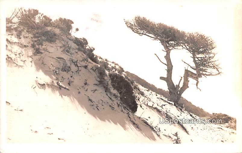 Side of Mountain - Upland, California CA Postcard