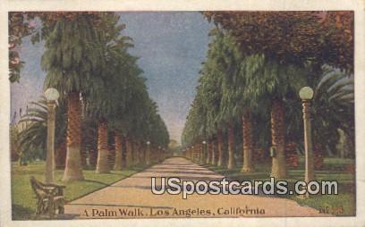 Palm Walk - Los Angeles, California CA Postcard
