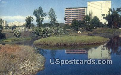 La Brea Tar Pits - Los Angeles, California CA Postcard