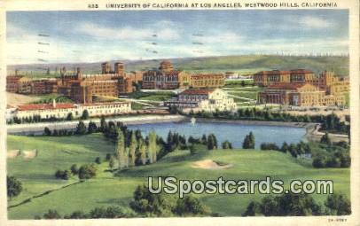 University of California - Los Angeles Postcard