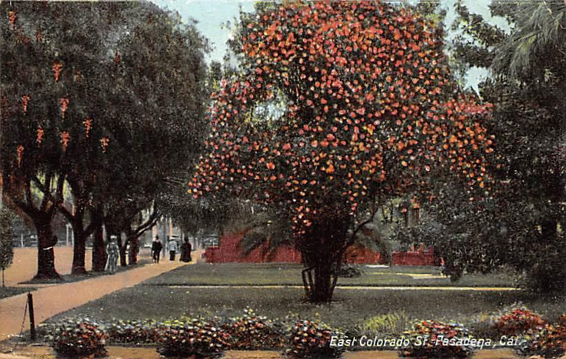 Saint Pasadena CA