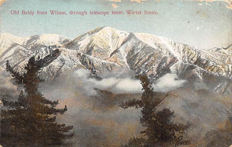 Wilson CA