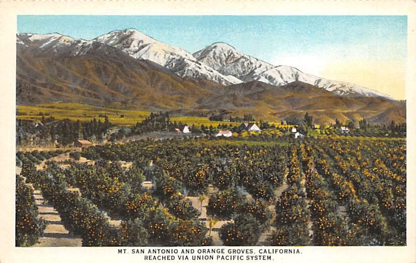 Mount San Antonio CA