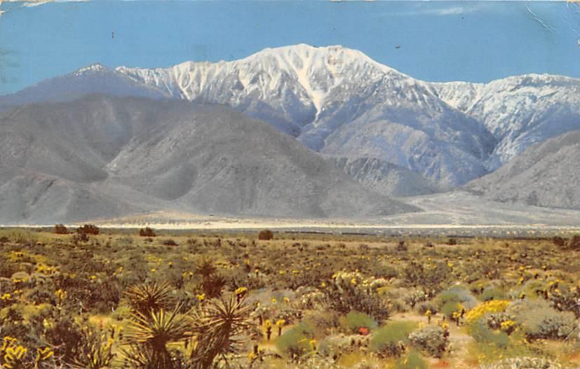 San Janinto Mountains CA