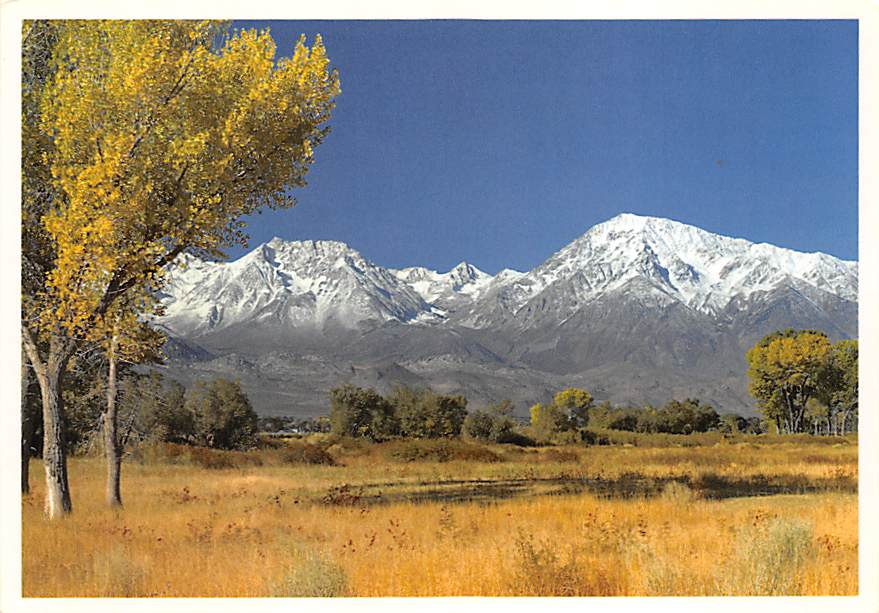 Mount Tom CA