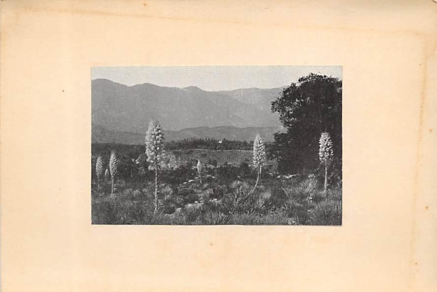 San Juan Mountains CA