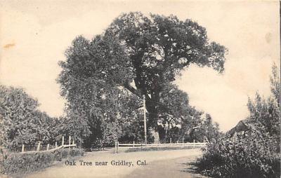 Gridley CA