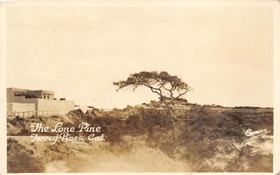 Torrey Pines CA