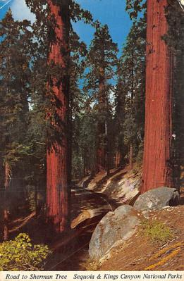 Kings Canyon National Parks CA