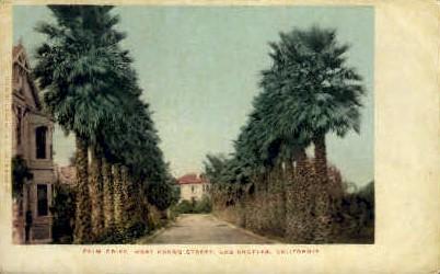 Palm Dr. West Adams St. - Los Angeles, California CA Postcard