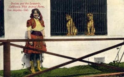California Wild Animal Farm - Los Angeles Postcard