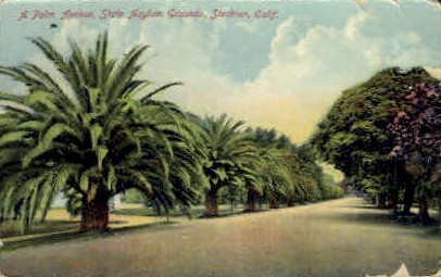 A Palm Ave. - Stockton, California CA Postcard