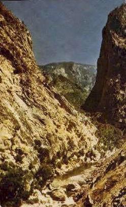 Kings Canyon - Fresno, California CA Postcard