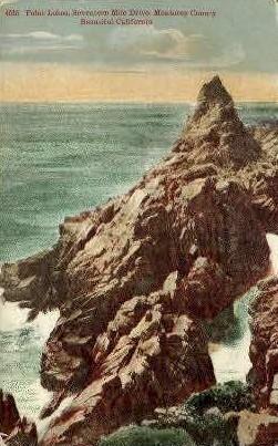 Point Lobos - Monterey, California CA Postcard