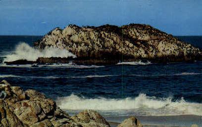 Seal and Bird Rocks - Monterey, California CA Postcard