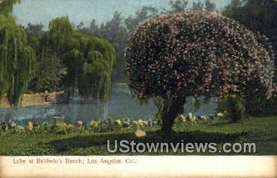 Lake, Baldwin's Ranch - Los Angeles, California CA Postcard
