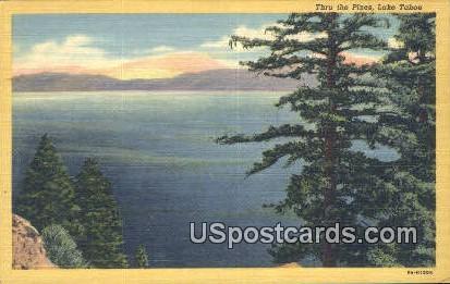 Thru the Pines - Lake Tahoe, California CA Postcard