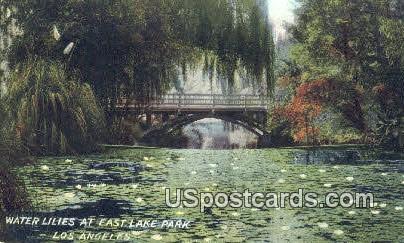 Water Lilies, East Lake Park - Los Angeles, California CA Postcard
