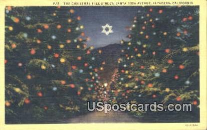 Christmas Tree Street, Santa Rosa Ave - Altadena, California CA Postcard