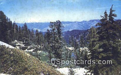 Conway Lake - Mt. Shasta, California CA Postcard